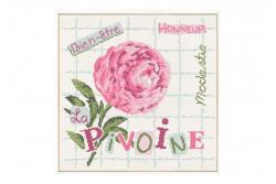 """Diagramme au point de croix Lilipoints """" La Pivoine"""""""