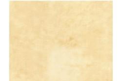 Tissu Patch Quilters Shadow nuagé beige doré