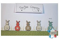 "Bouton en bois ""5 petits lapins """