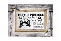 """Diagramme point de croix """"Espace Protégé"""""""